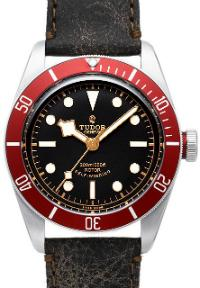 Tudor Heritage Black Bay in der Version 79220R (1)