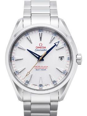 Omega Seamaster Aqua Terra Chronometer Zifferblatt silber