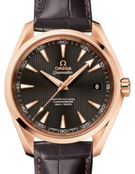 Omega Seamaster Aqua Terra Master Co-Axial Chronometer in der Version 231-53-42-21-06-002