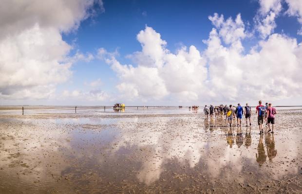 Gruppe Wattwanderer im wattenmeer